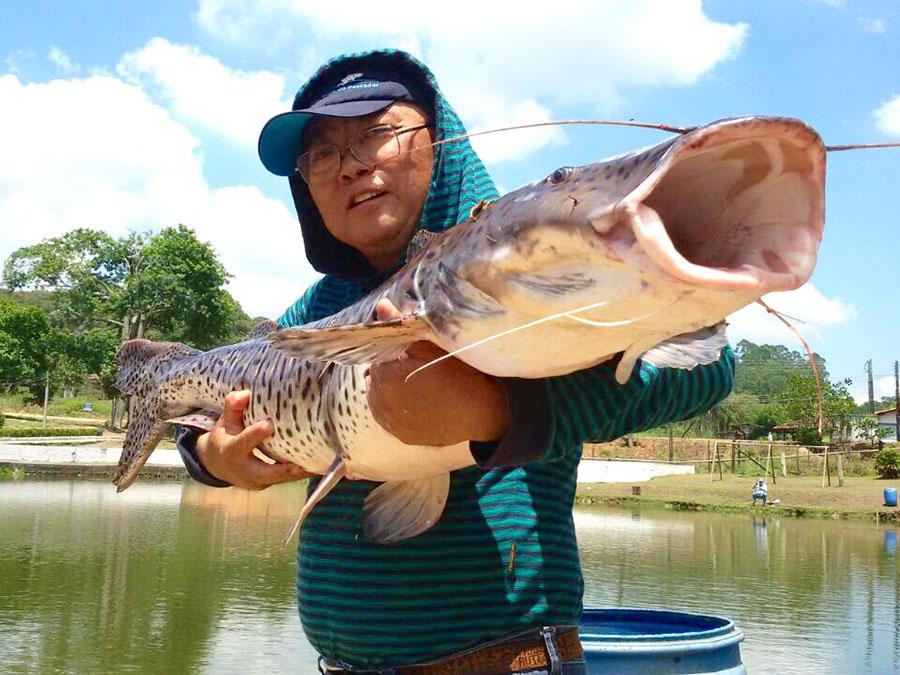 Pescador01