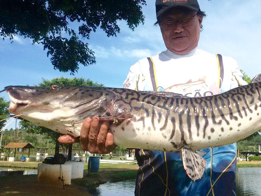 Pescador02